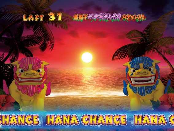 ハナペカ HANA CHANCE