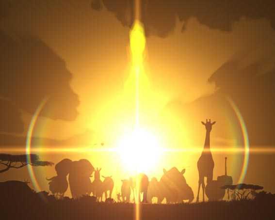 野生の王国 サバンナの夜明け演出