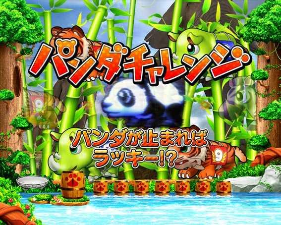 野生の王国 パンダチャレンジ
