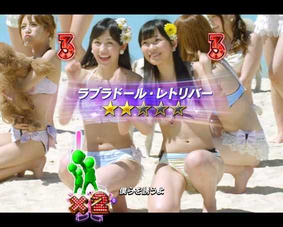 AKB48 桜 LIGHT ラブラドール・レトリバー